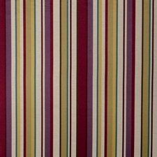 Grapevine Stripes Drapery and Upholstery Fabric by Fabricut