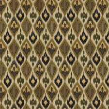 Forest Global Drapery and Upholstery Fabric by Fabricut