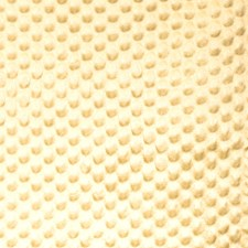 Sesame Solid Drapery and Upholstery Fabric by Vervain