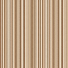 Ash Brown Stripes Drapery and Upholstery Fabric by Stroheim