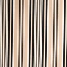 Mushroom Stripes Drapery and Upholstery Fabric by Stroheim