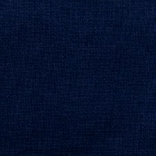 Royal Solid Drapery and Upholstery Fabric by Trend