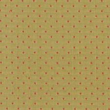 Spring Drapery and Upholstery Fabric by Robert Allen