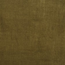 Meadow Drapery and Upholstery Fabric by RM Coco