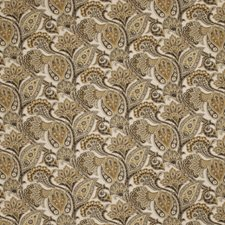 Rocky Coast Paisley Drapery and Upholstery Fabric by Fabricut