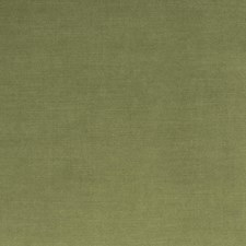 Leaf Solid Drapery and Upholstery Fabric by Trend