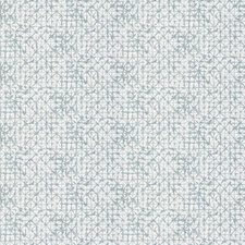 Mist Global Drapery and Upholstery Fabric by Fabricut