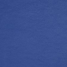 Marine Drapery and Upholstery Fabric by Robert Allen