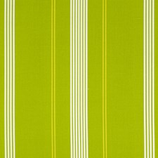 Parakeet Drapery and Upholstery Fabric by Robert Allen /Duralee