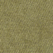 Peridot Drapery and Upholstery Fabric by Robert Allen /Duralee