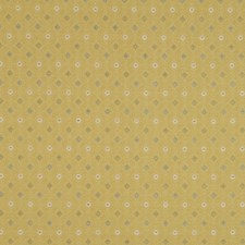 Summer Gold Drapery and Upholstery Fabric by Robert Allen