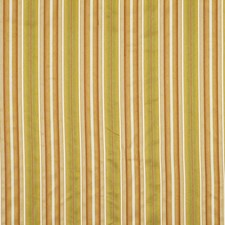 Desert Drapery and Upholstery Fabric by Robert Allen
