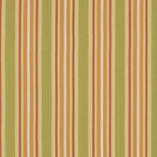 Apricot Drapery and Upholstery Fabric by Robert Allen /Duralee