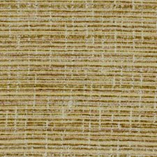 Cantaloupe Drapery and Upholstery Fabric by Robert Allen