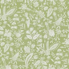 Willow Print Drapery and Upholstery Fabric by Scalamandre