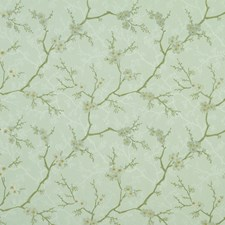 Pistachio Drapery and Upholstery Fabric by Robert Allen /Duralee
