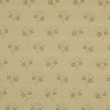 Wisteria Drapery and Upholstery Fabric by Robert Allen /Duralee