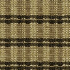 Twig Drapery and Upholstery Fabric by Robert Allen/Duralee
