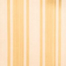 Jasmine Drapery and Upholstery Fabric by Fabricut