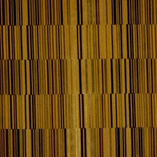 Golden Drapery and Upholstery Fabric by Robert Allen