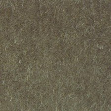 Sage Drapery and Upholstery Fabric by Highland Court