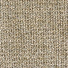 Aloe Drapery and Upholstery Fabric by Highland Court