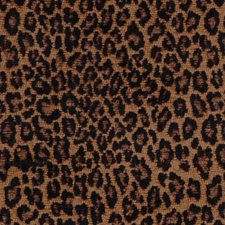 Tigers Eyes Drapery and Upholstery Fabric by Highland Court