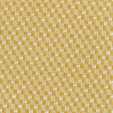 Buttercup Drapery and Upholstery Fabric by Highland Court