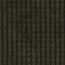 Graphite Drapery and Upholstery Fabric by Robert Allen