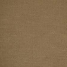 Wren Drapery and Upholstery Fabric by Robert Allen