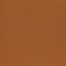 Sienna Drapery and Upholstery Fabric by Robert Allen