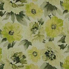 Kiwi Drapery and Upholstery Fabric by Robert Allen /Duralee
