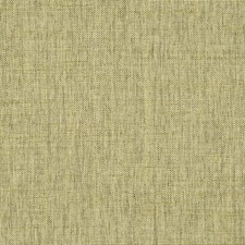 Brass Drapery and Upholstery Fabric by Robert Allen