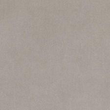266981 15725 159 Dove by Robert Allen