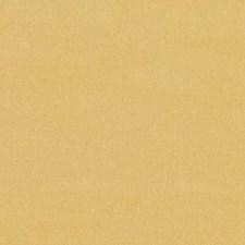 272998 DV15921 632 Sunflower by Robert Allen
