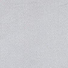 275557 DF16038 86 Oyster by Robert Allen