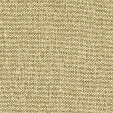 277941 DW16010 258 Mustard by Robert Allen