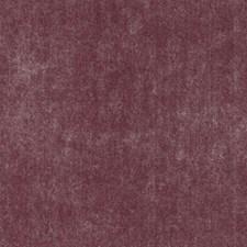 279125 HV15975 298 Raspberry by Robert Allen
