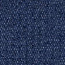 281821 DW16016 99 Blueberry by Robert Allen
