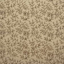 Beige/Brown Solid W Drapery and Upholstery Fabric by Kravet