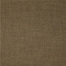 Earth Solid Drapery and Upholstery Fabric by Kravet