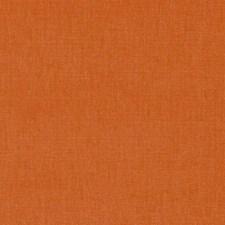 284927 32770 34 Pumpkin by Robert Allen