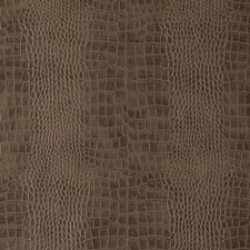 285517 DF15796 78 Cocoa by Robert Allen