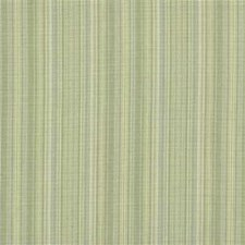 Agave Stripes Drapery and Upholstery Fabric by Kravet