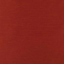 290009 32730 707 Tomato by Robert Allen