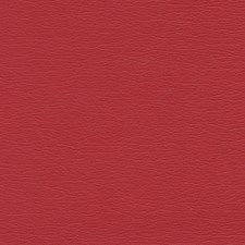 Cerise Drapery and Upholstery Fabric by Schumacher