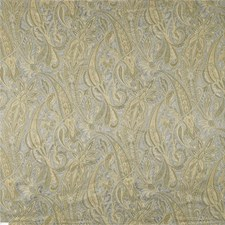 Grammercy Park Botanical Drapery and Upholstery Fabric by Kravet