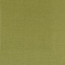 Fern Drapery and Upholstery Fabric by Highland Court