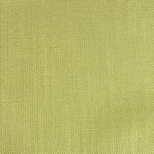 Luau Green Drapery and Upholstery Fabric by B. Berger