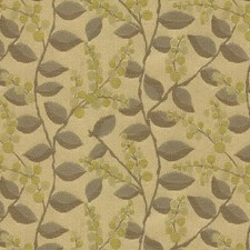 Lemongrass Botanical Drapery and Upholstery Fabric by Kravet